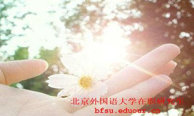 北京外国语大学的在职博士报考条件